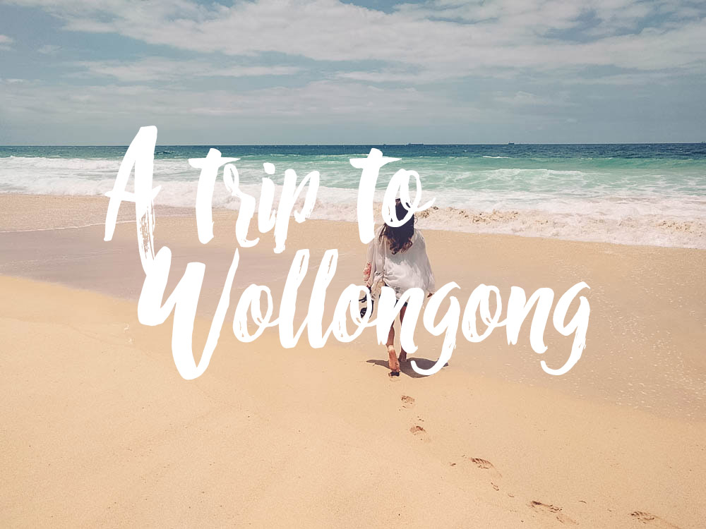 a trip to wollongong