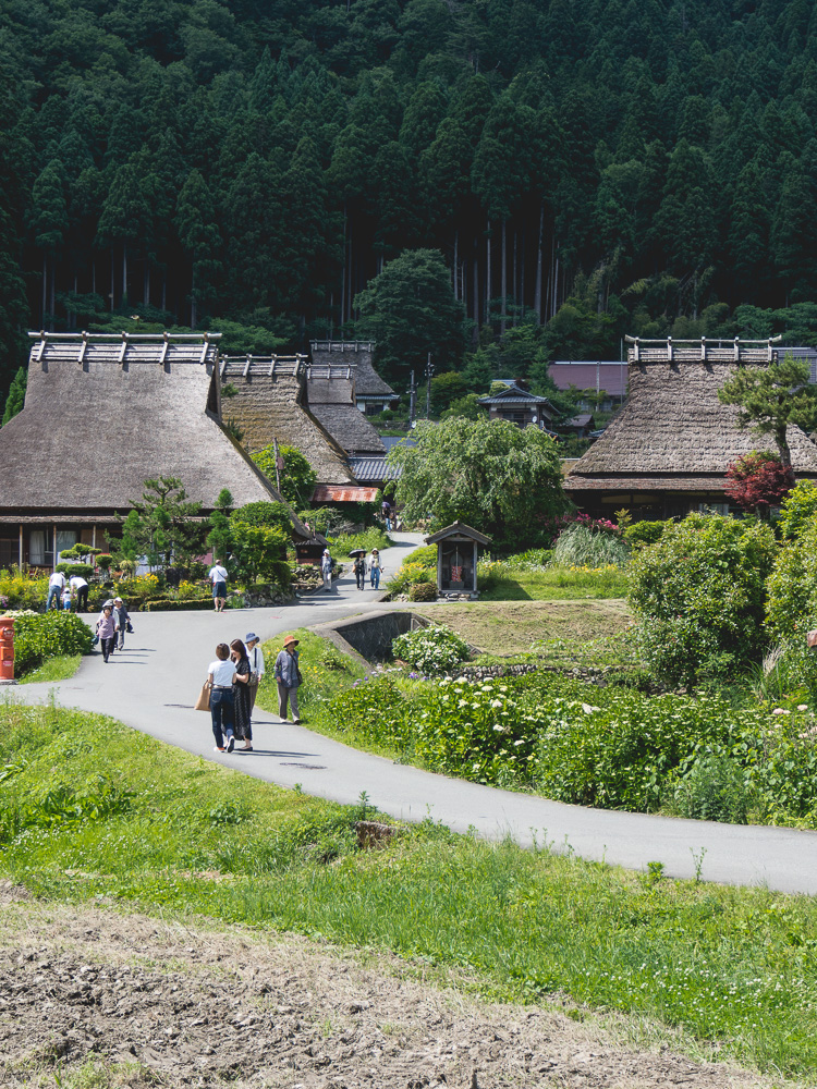 miyama thatched roof houses