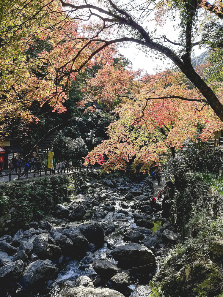 minoh river with autumn colours